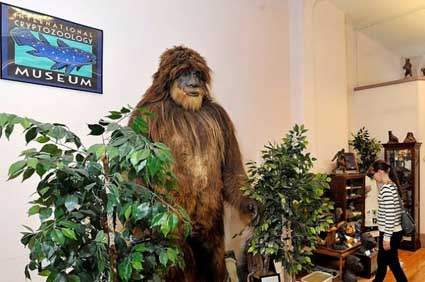 the_cryptozoology_museum_united_states