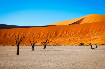 Leading Lines in Deadvlei
