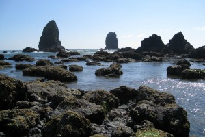 Olympic Peninsula, Washingtion